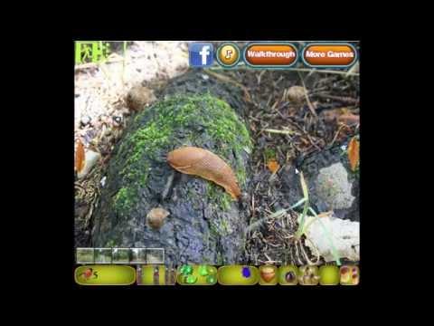 EscapeFan Pine Tree Forest Mystery Walkthrough