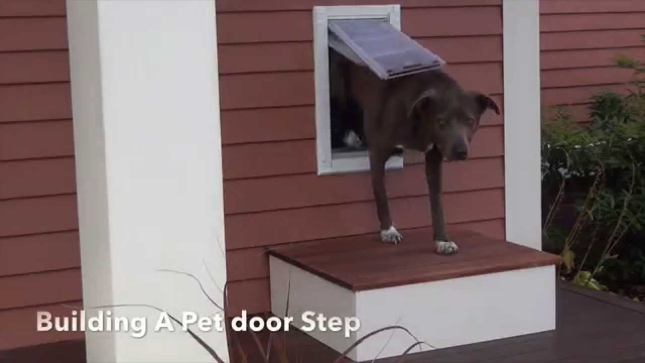 Building a dog door step youtube for Step by step to build a house