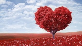 "Peaceful music, Relaxing music, Instrumental Musc ""Endless Love""  Happy Valentines Day"