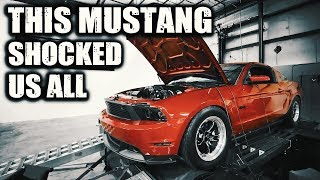 This Procharged Mustang surprised everyone... even the owner.