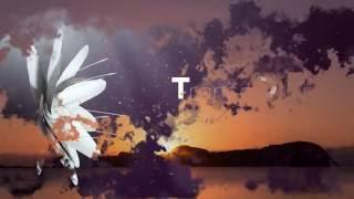 Manuel Le Saux & TrancEye - Endless Horizon (Original Mix)