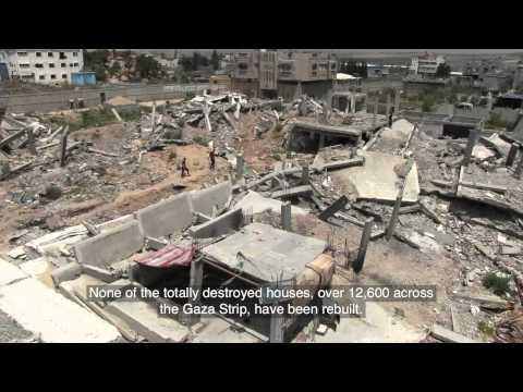 Gaza, one year on