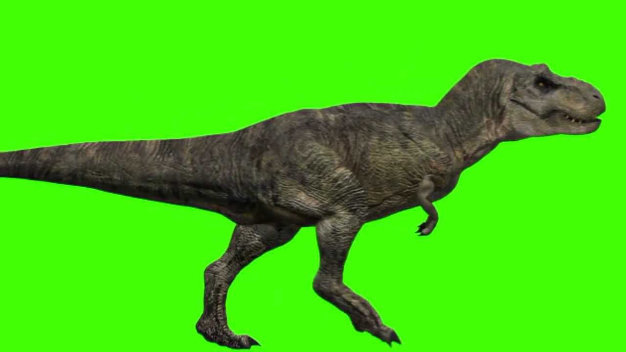 JURASSIC PARK III Tyrannosaurus Velociraptor Green Screen ...