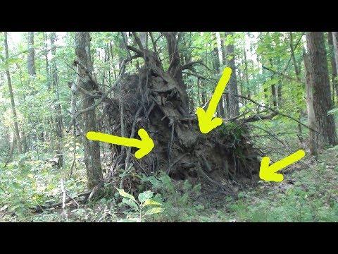 ПЕРВЫЙ РАЗ я ЕЕ нашел! Вот это находка! Удачный коп в лесу.