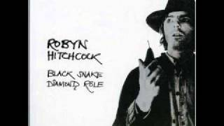 Watch Robyn Hitchcock City Of Shame video