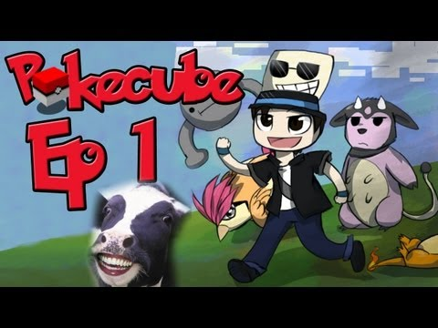 Pokemon - Pokecube Adventure - Ep 1 - Scary cow :(