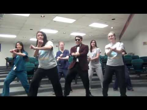 Psi Omega Style (2013 Delta Psi Rush Video)