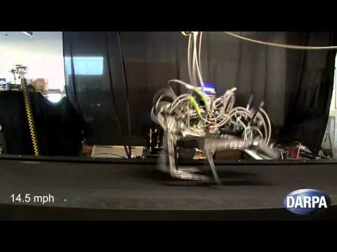 Cheetah Robot - DARPA Cheetah Sets Speed Record for Legged Robots