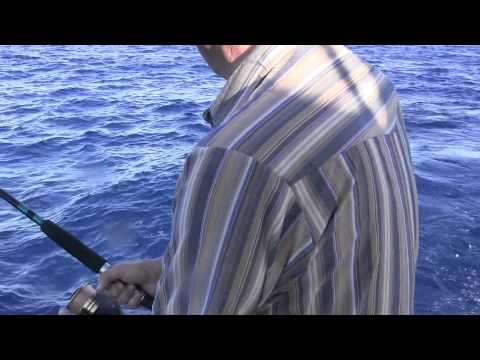 Offshore Fishing April 4, 2015
