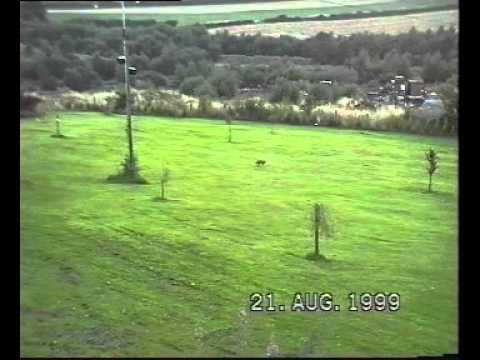 21-8-99 foxy stuff & ham radio antenna