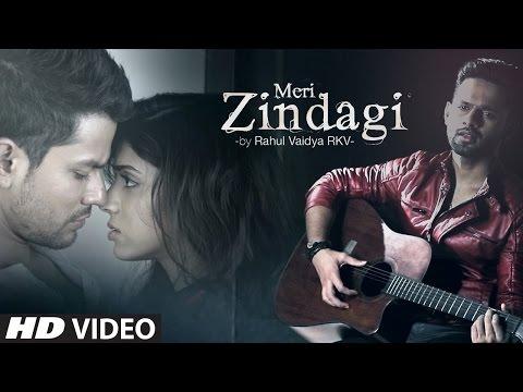 Meri Zindagi VIDEO Song - Rahul Vaidya   Mithoon   Bhaag Johnny   T-Series