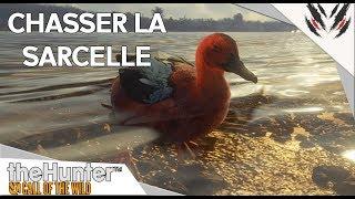 THE HUNTER CALL OF THE WILD : CHASSER LA SARCELLE [TUTO]