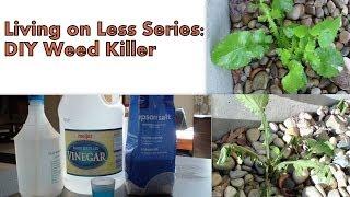 Living on Less Series:  DIY Weed Killer