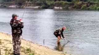 рыбалка на Припяти сазан на фидер