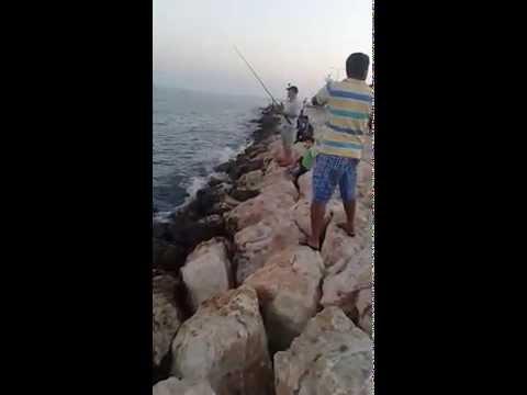 fishing spots al wakra port doha-qatar