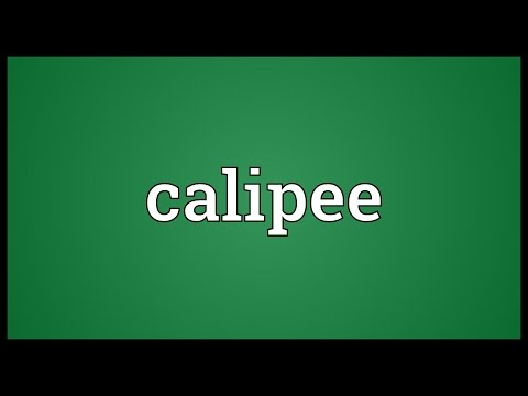 Header of calipee