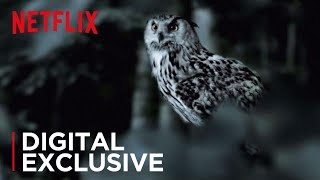 The Staircase | The Owl Theory | Netflix