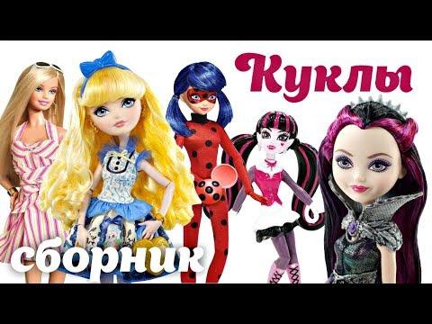 Сборник с куклами: Барби, Хай, Леди Баг и другие