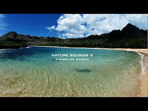 Nature Sound 9 - THE MOST RELAXING SOUNDS -