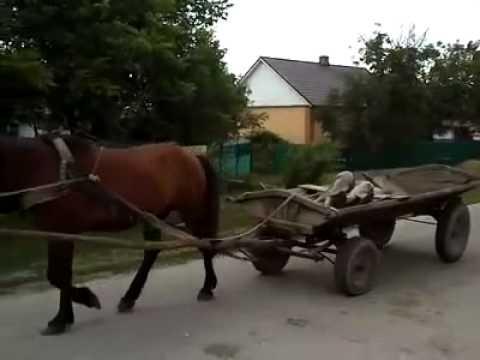 Деревенский транспорт — навигатор + круиз контроль