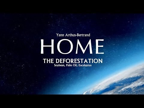 HD HOME - The Deforestation: Soybean, Palm Oil, Eucalyptus (Clip)