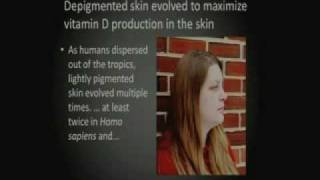 The Evolution of Human Skin Pigmentation