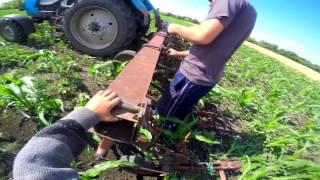 """Раб. 2-ой день """"Культивация междурядки кукурузы и снятие помпы с комбайна"""""""