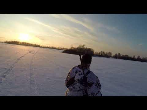 Охота на зайца 2018г( Удачный, морозный денек )