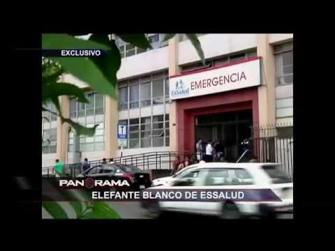 Elefante Blanco De Essalud: Un Nuevo Caso De Millonario Despilfarro