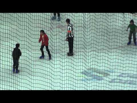 Horrific Dubai Mall Skating Accident Caught on Film
