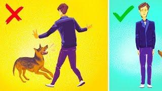 Como Sobreviver a Um Ataque de Cachorro