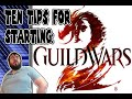 New to Guild Wars 2? 10 Tips for new players!