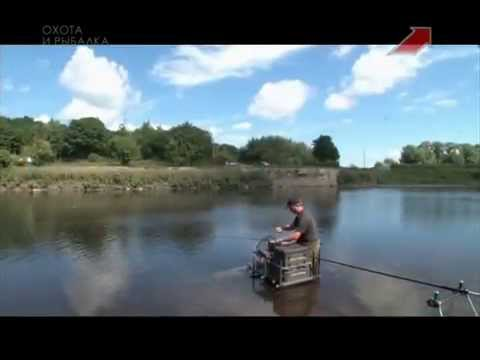 рыбалка на реке тесьма