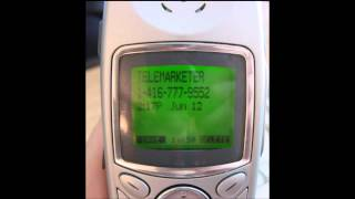 Telemarketer Call 6: Microsoft Virus Call 2