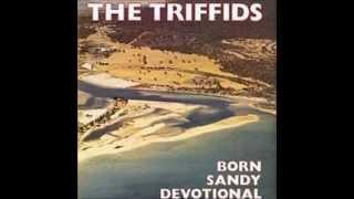 Watch Triffids Stolen Property video