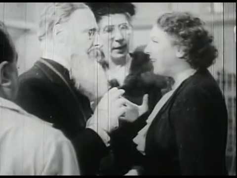 Totò – Animali pazzi (1/5) 1939