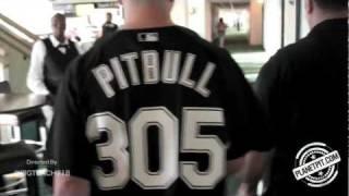 Pitbull - 305 Till I Die