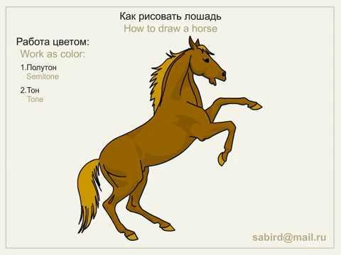 ¬идео как нарисовать лошадь на дыбах
