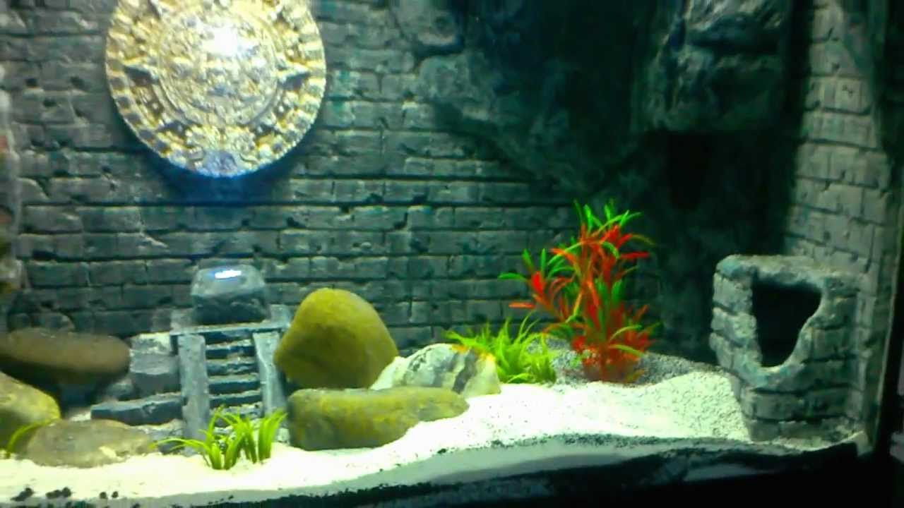 Aquarium Decor Themes Mayan Themed 3d Aquarium