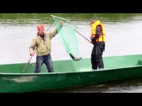 ловить рыбу неводом видео