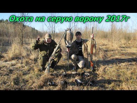 музыка про охоту и рыбалку бесплатно
