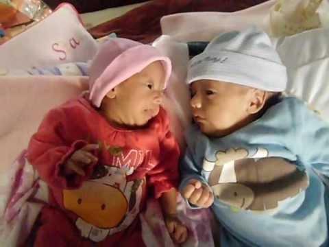 Bebés mellizos recién nacidos platicando.