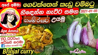 Wambatu curry (homegrown brinjal) by Apé Amma