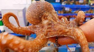 Koreaanse straatvoedsel - Reuze Octopus Zeevruchten Seoul Korea