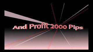 Forex  Trading Simple  Strategies | Strategy Forex Profit 2000 Pips