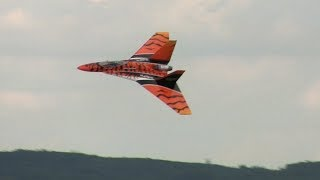 RC Wild Hornet - Jets Over Czech 2017
