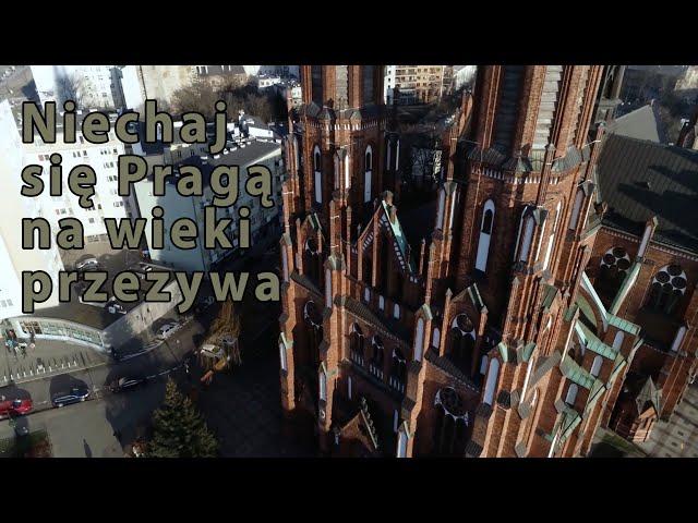 Ciekawostki warszawskiej Pragi   372 rocznica nadania praw miejskich   Tu był kiedyś wypalony las!