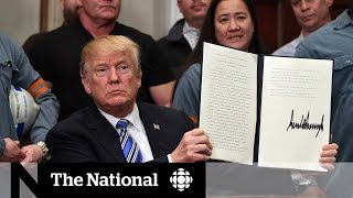 Canada, Mexico unaffected by Trump's tariffs… for now
