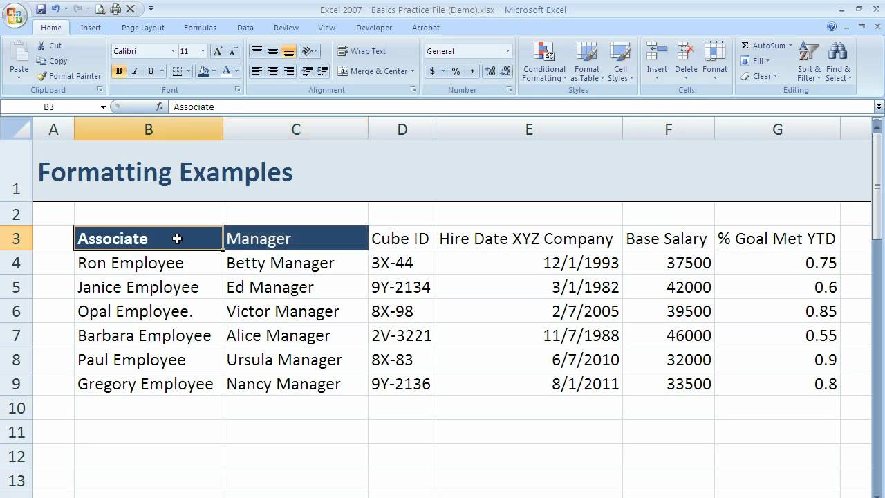 how to use the font options to make basic formatting changes in excel 2007  excel 07-007