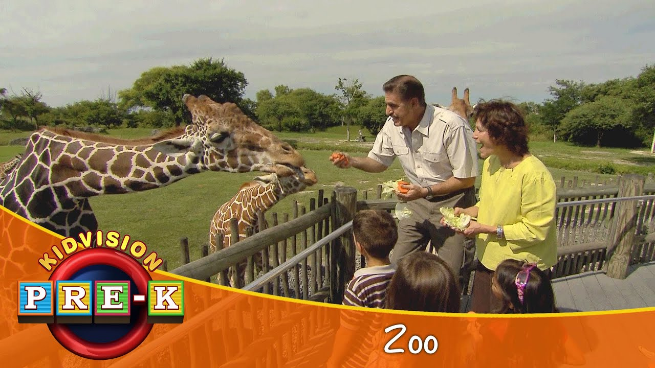Report on trip to zoo
